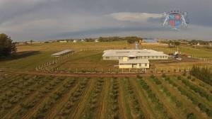 Colégio Agricola